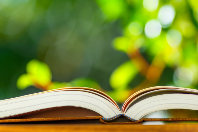 書籍に関する画像